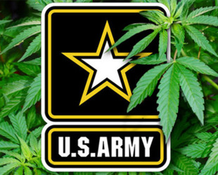 an overview of the harsh anti drug policies in the united states Here's a timeline history of the war on drugs, including when and how it began, what the significant events have been and how the outlook has changed.