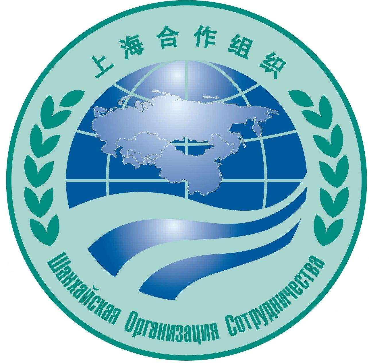 thesis on shanghai cooperation organization Charting a new silk road the shanghai cooperation organization and russian foreign policy by benjamin fontaine gonzalez bs, university of oregon, 2001.