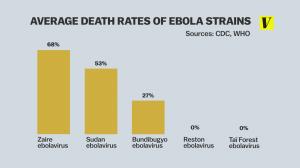 virus_strains_ebola.0