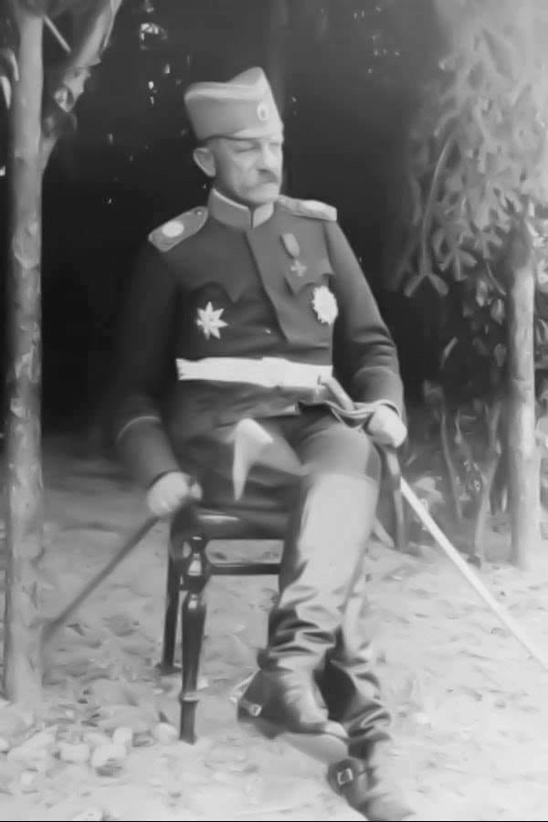 Vojvoda Zivojin Misic