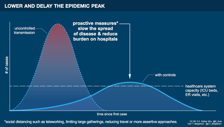 Epidemic peak