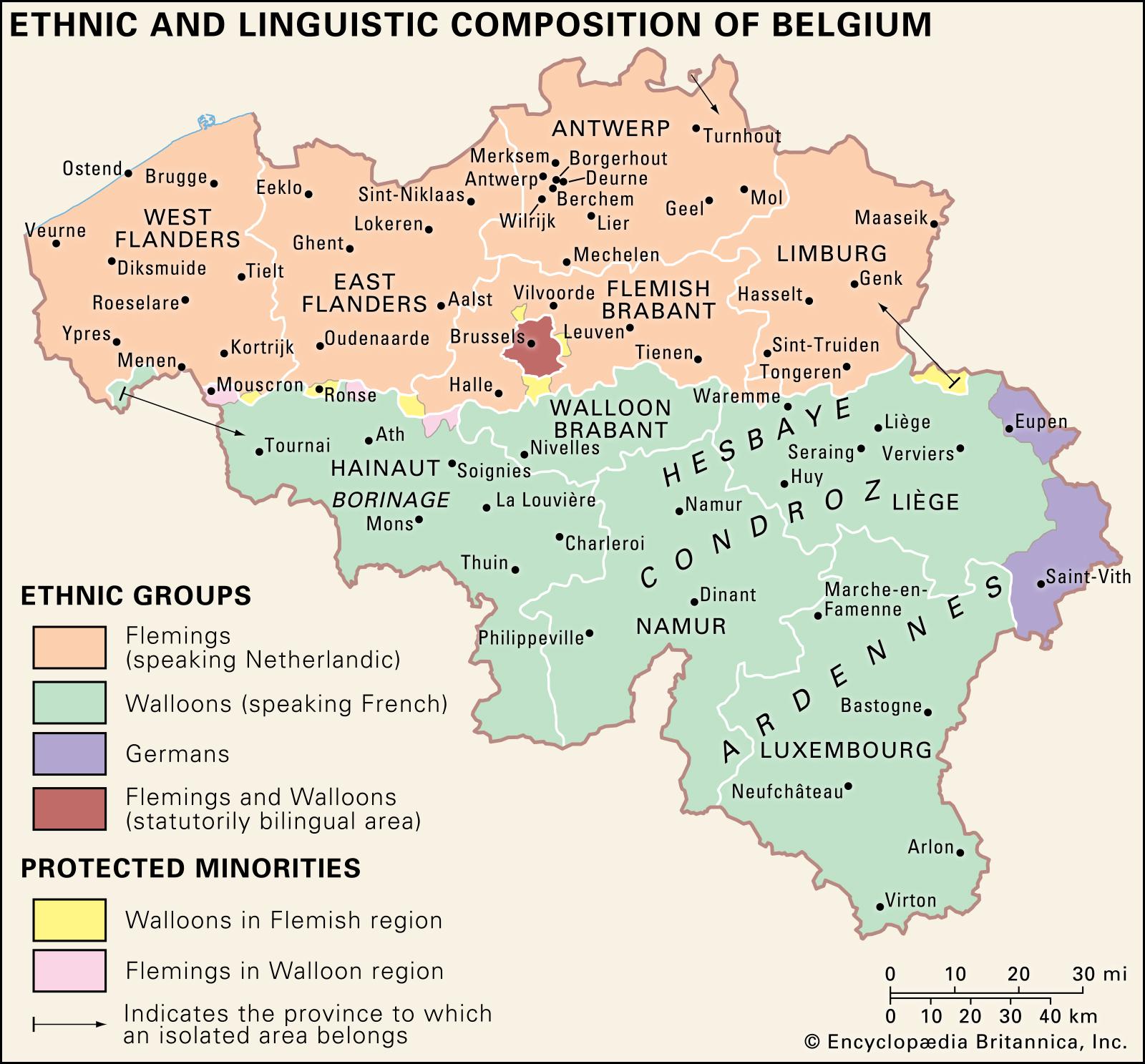 composition-Belgium