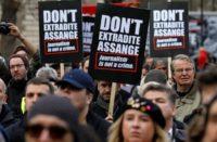 Assange extradition