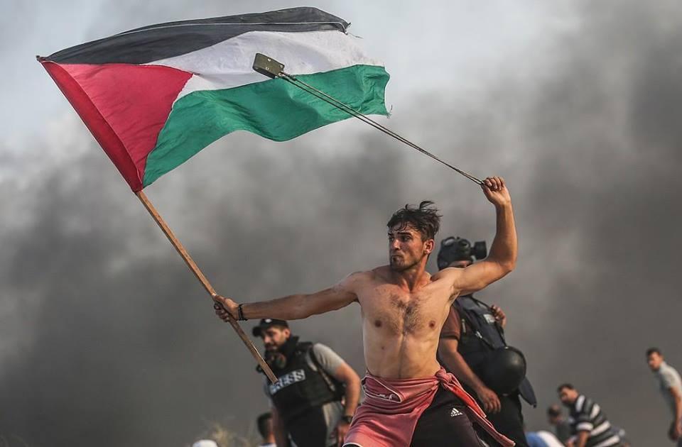 Gaza Palestine Israel Middle East